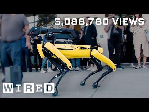 Jak se z robotů Boston Dynamics stala internetová senzace