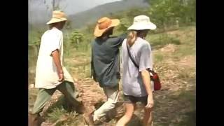 Geoff Lawton talks, Permaculture Costa Rica