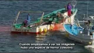 Matanza delfines