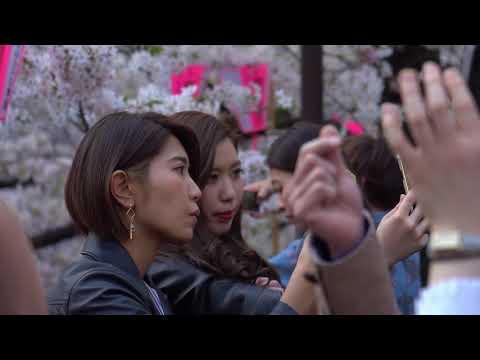 When Sakura falls in Tokyo - Sony A6300