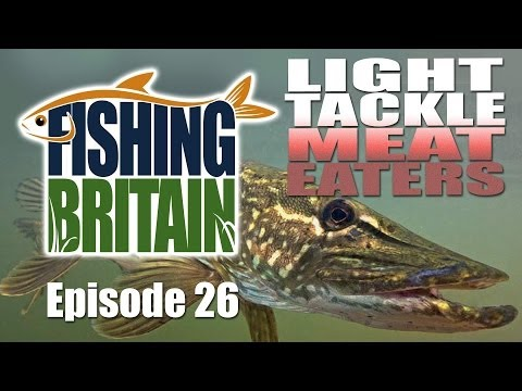 Light Tackle Meat Eaters – Fishing Britain episode 26