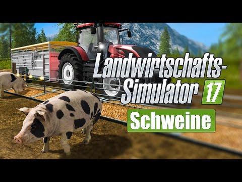 FARMING SIMULATOR 17: Schweine, Schweinezucht und Futter! I FEATURE LS 17