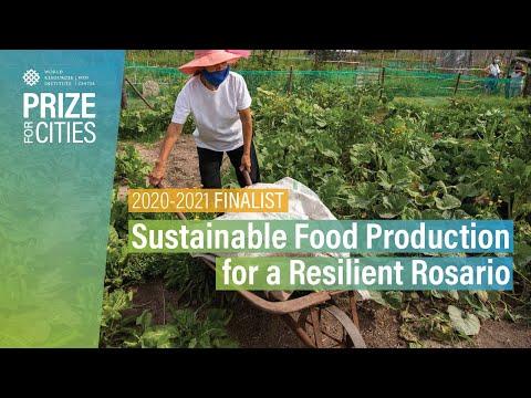 Rosario's urban farming programme wins global resilience award