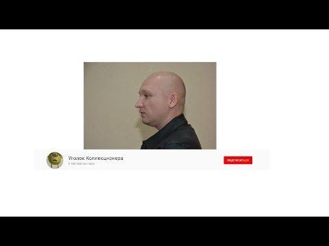 Блогер сел по 222 УК РФ
