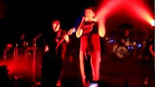 Example - Never Had A Day & Midnight Run- Live in Vienna