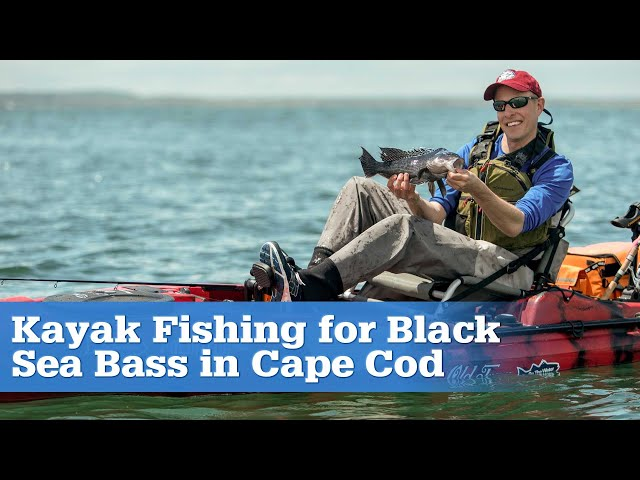 Kayak Fishing for Black Sea Bass in Cape Cod (Full Episode)