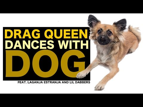 DRAG QUEEN DANCES WITH DOG