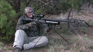 AIRGUN HUNT: Pigs in Texas with the Hercules 45 caliber big bore air rifle