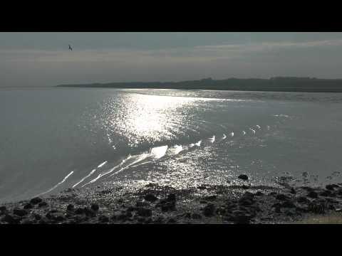 Dutch Wadden Sea, World Heritage UNESCO,
