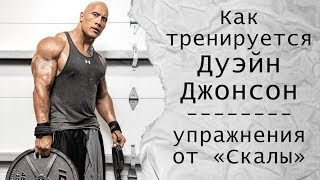 Как тренируется Дуэйн Джонсон (упражнения и мотивация от «Скалы»)