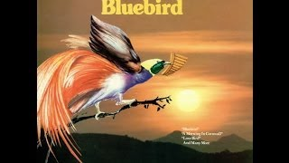 James Last - Kingfisher