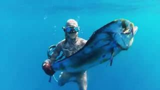 Poindimié Blue Spearfishing - Ocean Paradise