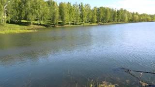 Платные водоёмы для рыбалки в новосибирске