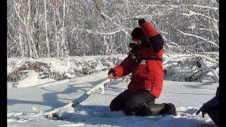 Ловля крупного окуня на водоемах краснодарского края