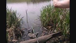 Озера красноярского края для рыбалки