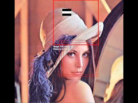 Video mostrando ejemplo de haar cascade