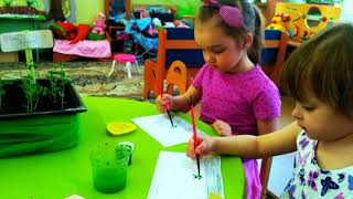 Проект детский познавательно-исследовательский