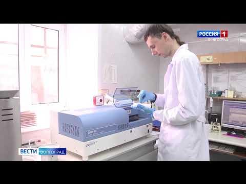 Управлением Россельхознадзора на территории Волгоградской области осуществлен контроль за достоверностью деклараций о соответствии на партии зерна, выпущенных в обращение
