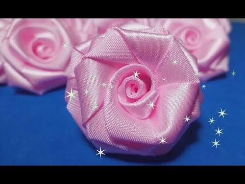 Rosa Maravilhosa