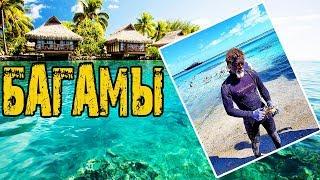 Багамские Острова [Багамы]. Изучаем остров Бимини | Путешествие на яхте по Бермудскому треугольнику.