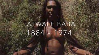 Tatwale Baba Himalayan Yogi