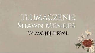 Shawn Mendes   In My Blood TŁUMACZENIE