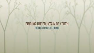 385  - Protecting the Brain / Fountain of Youth - Diane Burnett