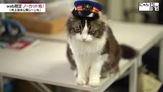 Vol.30「にゃん旅鉄道」至福の時間だにゃ~♥