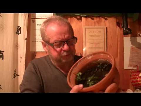 Nasiona rzepa i potencji