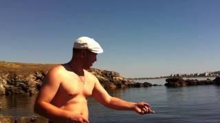 Все о рыбалке на азовском море в щелкино