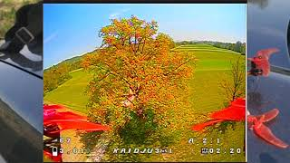 "Wind, Tree and Crash - Kaidju R 3"" - Beginner Learning Acro FPV Drone Flying - Episode 04"