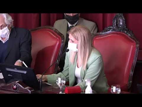 Sesión en la Cámara de Senadores
