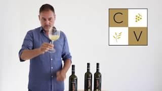 Video degustazione di Marche Passerina IGT BIO