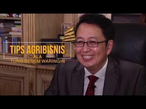 Tips Agribisnis Ala Tung Desem Waringin