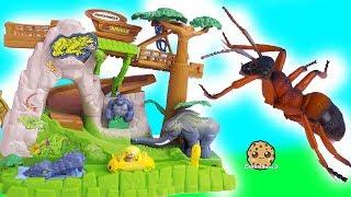 My Mini Mixie Q's Ride Shopkins Cutie Car In Jungle ! Cookie Swirl C Video