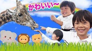 お出かけ 動画★かわいい 動物がいっぱい!仲良し兄弟 Brother4 サファリパークを初体験!