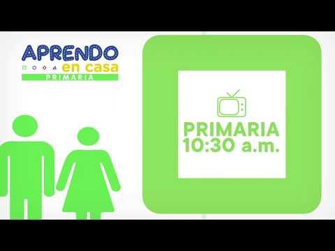 Aprendo en casa se estrena mañana por TVPerú, Canal IPe y Nacional