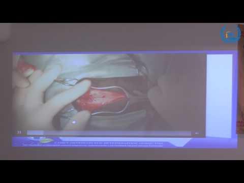 В.В. Сотников 11.11.2016 УЦ ЗООВЕТ | Опухоли головного мозга. Новообразования, ч.2