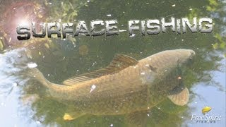 CARP FISHING - FREE SPIRIT SURFACE FISHING