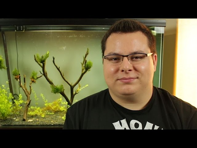 80 Gallon Planted Tank Update Episode 5