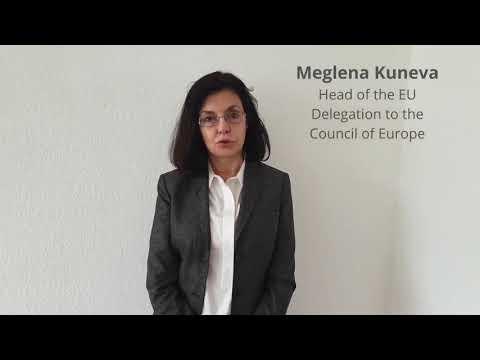 EU Ambassador Meglena Kuneva about the outgoing Georgian Presidency of the Council of Europe