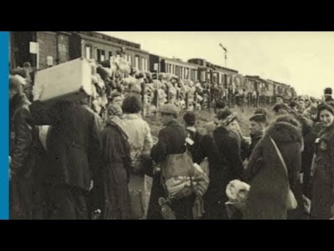 שילוחי יהודי הונגריה ולודז' לאושוויץ-בירקנאו בשנת 1944