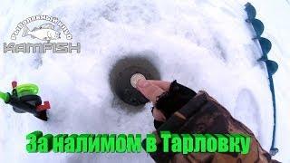 Места для рыбалки в набережных челнах