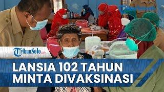 Cerita Lansia Berusia 102 Tahun Datangi Sentra Vaksinasi di Klaten: Siap Divaksin
