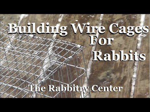 , title : 'HOW TO BUILD A RABBIT CAGE & WHY WE CHOSE CAGES OVER COLONY RAISING