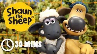 Shaun the Sheep - Season 4 Compilation (Episodes 6-10)