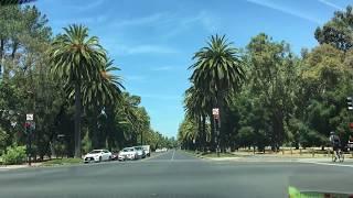Stanford University Стэнфордский университет | Территория Красота