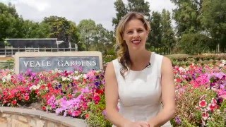 Veale Gardens Lifestyle Video
