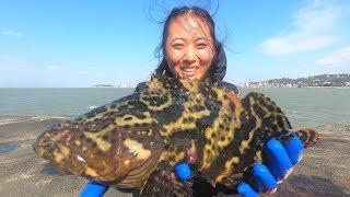 渔妹赶海发现天然洞穴,洞口放一排臭鱼诱饵钓钩,果然抓到大龙胆
