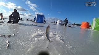Зим рыбалка на сахалине